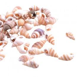 Świderki muszle dekoracyjne zestaw / muszelki ozdobne do akwarium