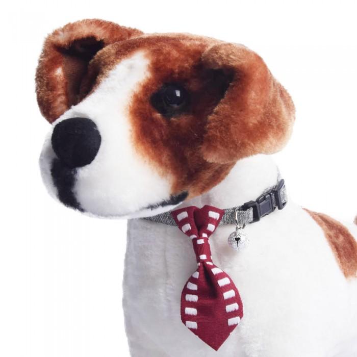 Obroża dla psa kota z krawatem i dzwoneczkiem bordowa obwód szyi 18-28 cm