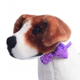 Fioletowa duża kokarda mucha dla psa Yorka Shih Tzu na gumce
