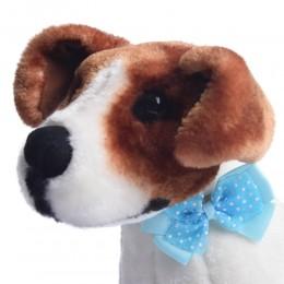 Błękitna kokarda muszka mucha dla psa Yorka Shih Tzu na gumce