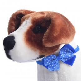 Niebieska kokarda muszka mucha dla psa Yorka Shih Tzu kota na gumce