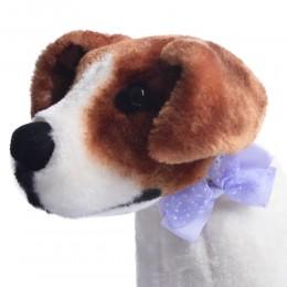 Jasnofioletowa kokarda muszka mucha dla psa Yorka Shih Tzu kota