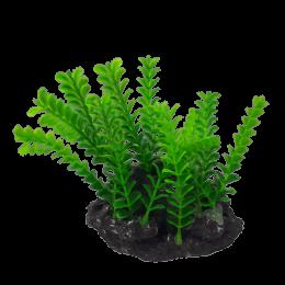 Moczarka sztuczna roślina do akwarium terrarium na kamieniu