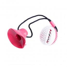Zabawka dla psa piłka z przyssawką gryzik czyszczący zęby czyścik