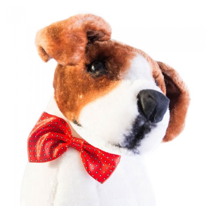 Muszka dla psa kota czerwona w białe kropeczki