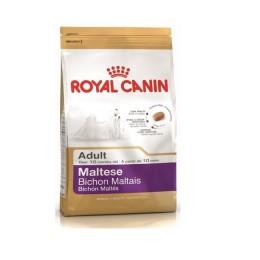 Sucha karma ROYAL CANIN Maltese Adult 500g MALTAŃCZYK