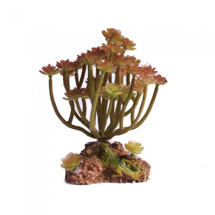 Sztuczna roślina SUKULENT do akwarium terrarium