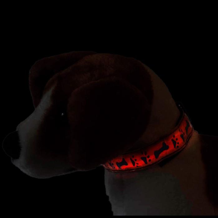 Obroża świecąca dla psa kota LED w ŁAPKI - duża - 40cm