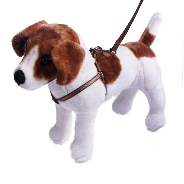 Szelki i smycz dla psa ze świecąca nitką | Komplet smycz obroża